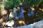 3 Derivación, prácticamente todo el agua de la regadera se desvía al prado próximo