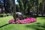 Foto 1. El Parque Municipal en agosto: áreas de césped bien regado y cortado, flores de temporada y árboles centenarios