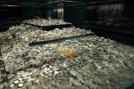 Monedas de La Mercedes