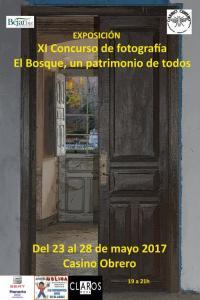 XI Concurso de fotografía Bejar.biz: El Bosque de Béjar, un patrimonio de todos.