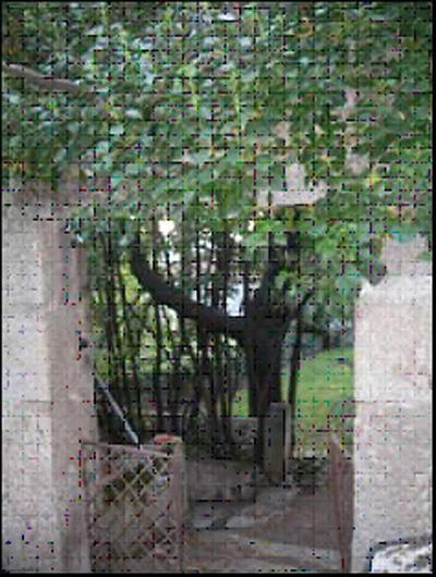 Foto 16.  Cancela de entrada al jardín.