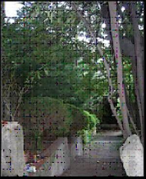 Foto 19. Camino a la terraza 2ª.