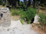 Foto 9. La regadera entra en el Parque Forestal de Monte Mario. No lleva nada de agua.